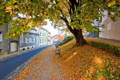 Zagreb historic upper town autumn view. Capital of Croatia Royalty Free Stock Image