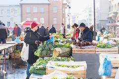 Zagreb, Kroatië: 7 januari 2016: Vrouwelijke klant het kopen groenten bij Dolac-markt tijdens wintertijd met sneeuw stock foto
