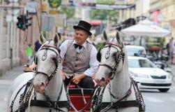 Zagreb turist- dragning/gammal vagnstaxichaufför Arkivbild