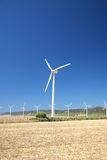 Zahara wind power mills Royalty Free Stock Images