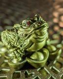 Zahl eines grünen Frosches mit roten Augen Lizenzfreies Stockbild