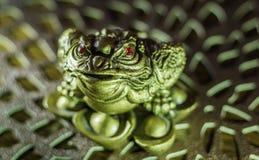 Zahl eines grünen Frosches mit roten Augen Lizenzfreies Stockfoto