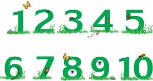 Zahlen des grünen Grases der Natur Stockfotos