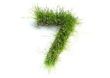 Zahlen gebildet vom Gras Stockfotos