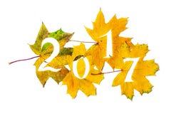 2017 Zahlen geschnitzt von den gelben Ahornblättern Lizenzfreies Stockfoto