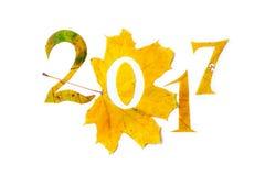 2017 Zahlen geschnitzt von den gelben Ahornblättern Stockfotos