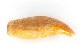 Zahn des Höhlebären Lizenzfreies Stockfoto