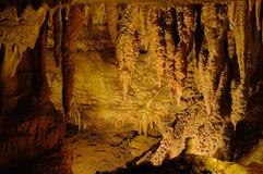 Zahn-Höhle-Anordnung des Haifischs Lizenzfreie Stockfotografie