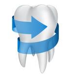 Zahn mit blauem Pfeil. Vektorillustration Lizenzfreies Stockfoto