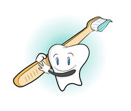 Zahn und Zahnbürste Stockbilder