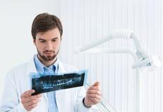 Zahnarzt überprüft die Röntgenaufnahme Stockbild