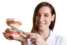 Zahnarzt erklärt Technik für Stockfotos