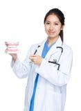 Zahnarzt mit großem Kiefer Lizenzfreies Stockbild