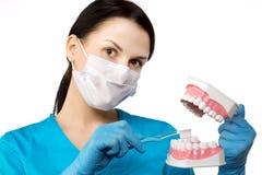 Zahnarzt mit Werkzeugen Zahnarzt-The-Konzept von Zahnheilkunde, werden weiß lizenzfreie stockfotos