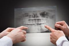 Zahnarzt zwei, der zahnmedizinischen Röntgenstrahl hält lizenzfreie stockbilder