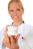 Zahnarztholding-Pflasterform der Zähne lizenzfreie stockfotos