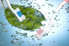 Zahnbürste Lizenzfreie Stockbilder