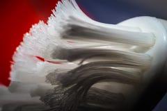 Zahnbürste empört sich im Makro lizenzfreies stockfoto