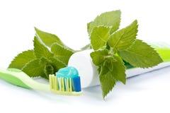 Zahnbürste, Zahnpasta und frische Blätter der Minze Lizenzfreies Stockbild