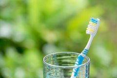Zahnbürsten im Glas auf unscharfem Hintergrund Lizenzfreie Stockfotos