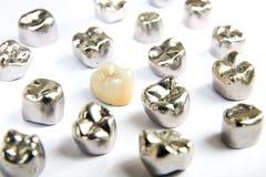 Zahnmedizinischer keramischer, Gold- und Metallzahn krönt auf weißem Hintergrund Lizenzfreies Stockfoto