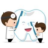 Zahnpflege des Zahnarztes Stockfotografie