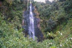 Zaina Waterfall em escalas de Aberdare, Kenya imagens de stock