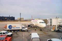 zajęczy Chicago lotniskowy zawody międzynarodowe o Zdjęcia Stock