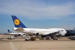 zajęczy Chicago lotniskowy zawody międzynarodowe o Obraz Royalty Free