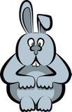 Zając, królik Obraz Stock