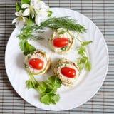 Zakąska z zucchini i pomidorami na białym talerzu fotografia stock