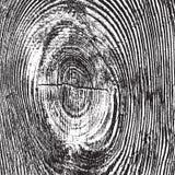 Zakłopotana Drewniana kępki tekstura Obraz Stock