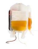 Zak geïsoleerd bloed en plasma stock afbeelding