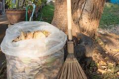 Zak van droge bladeren met bezem in de tuin stock foto