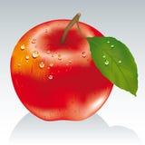 zakazany owoc Zdjęcia Stock
