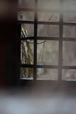zakazuje okno Zdjęcia Royalty Free