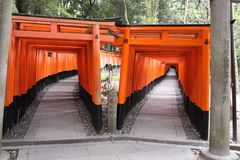 zakazuje torii Fushimi Inari świątynia Fushimi Inari Taisha kyoto Japonia Zdjęcia Stock