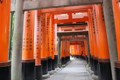 zakazuje torii Fushimi Inari świątynia Fushimi Inari Taisha kyoto Japonia Fotografia Royalty Free