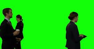 Zakenlui die tegen het groene scherm lopen stock videobeelden