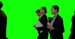Zakenlui die tegen het groene scherm lopen stock video