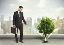 Zakenman die groene boom op stadsachtergrond water geven royalty-vrije stock afbeelding