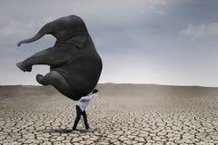 Zakenman die grote olifant opheffen royalty-vrije stock foto