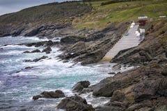 Zakinham Newfoundland royalty-vrije stock fotografie