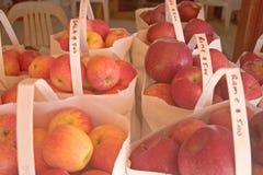 In zakken gedane appelen Stock Afbeelding