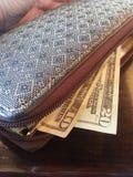 Zakken geld met bezinning Royalty-vrije Stock Foto