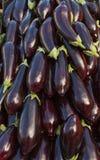 Zakken met de Markt van Peulvruchtenbonen Stock Afbeelding