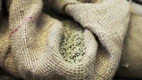 Zakken met gebraden niet koffiebonen in koffiefabriek Gezoem binnen stock videobeelden