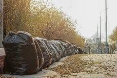 Zakken met gevallen bladeren op de straat Stock Afbeeldingen
