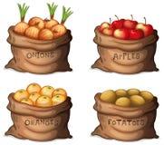Zakken van vruchten en gewassen stock illustratie