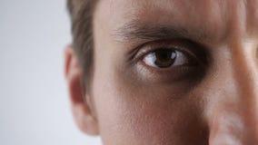Zakończenie w górę brązu oka młody caucasian mężczyzna patrzeje w kamera obiektyw przy białym tłem zbiory